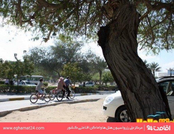 مسير ويژه دوچرخه سواري