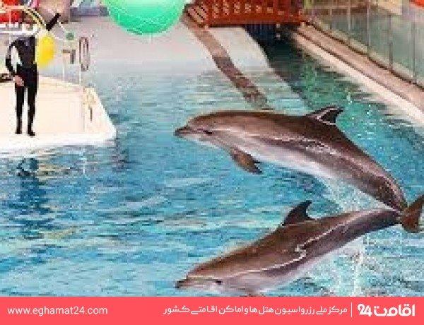 پارک دلفین (دلفیناریوم)