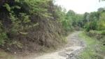 پارك جنگلي قلعه رودخان