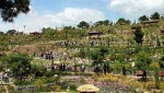 پارک جنگلی باراجین