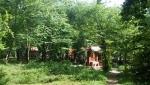 پارك جنگلی قرق