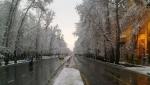 خیابان بهشتی
