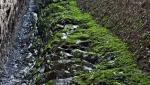 آبشار قره سو