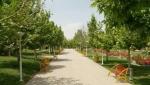 بوستان بسیج