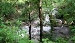 پارک جنگلی صفارود