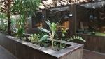 باغ خزندگان زیما