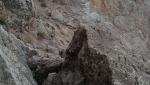 غار گلجیک