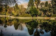 پارک های شیراز : فهرست بهترین تفرجگاه ها
