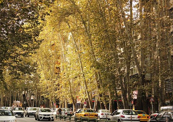 خیابان ولی عصر تهران