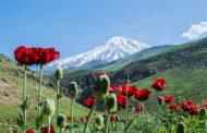 آشنایی با دره های زیبای ایران زمین