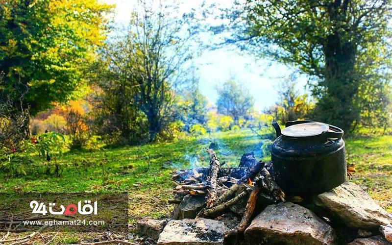 جنگل های ایران که باید دید