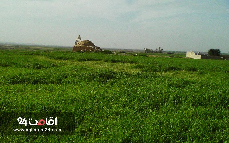 دشت بزرگ خوزستان