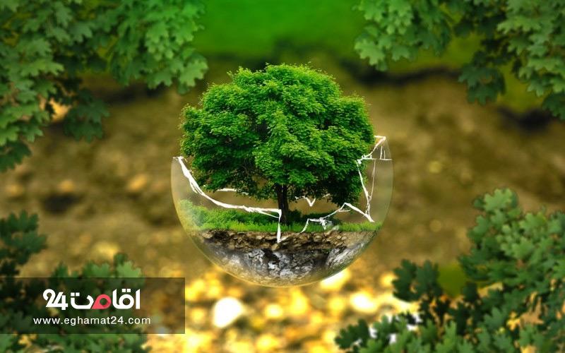 محیط زیست ایران و حفاظت از آن