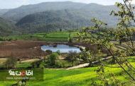 شهرستان نکا : لیست دیدنی ها، عکس و معرفی