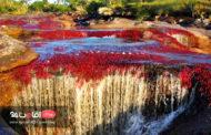 چشمه هفت رنگ شاهرود، بوم هزار رنگ طبیعت
