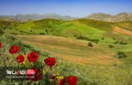 معرفی و آشنایی با کوه چهل چشمه