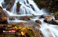 هفت آبشار سواد کوه تابلو هزار رنگ طبیعت مازندران