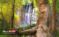 آبشار زرد لیمه ،  طبیعت بکر و پنهان چهارمحال و بختیاری