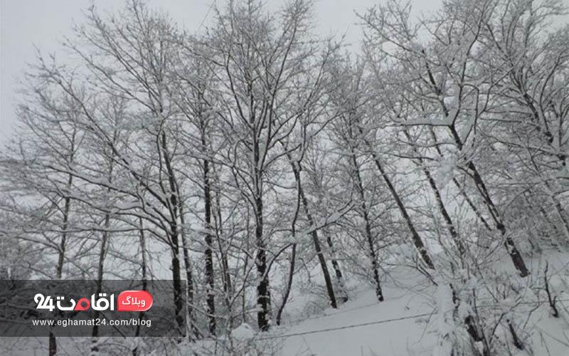 زمستان شمال