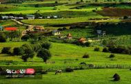 دیلمان، جایی برای آشتی با طبیعت در سفر تابستان