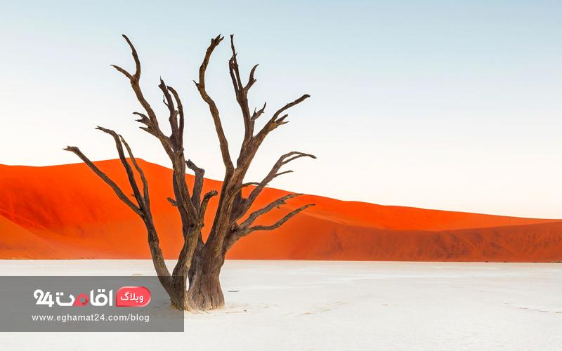 The Martian Landscape of Namibia - تصاویر طبیعت