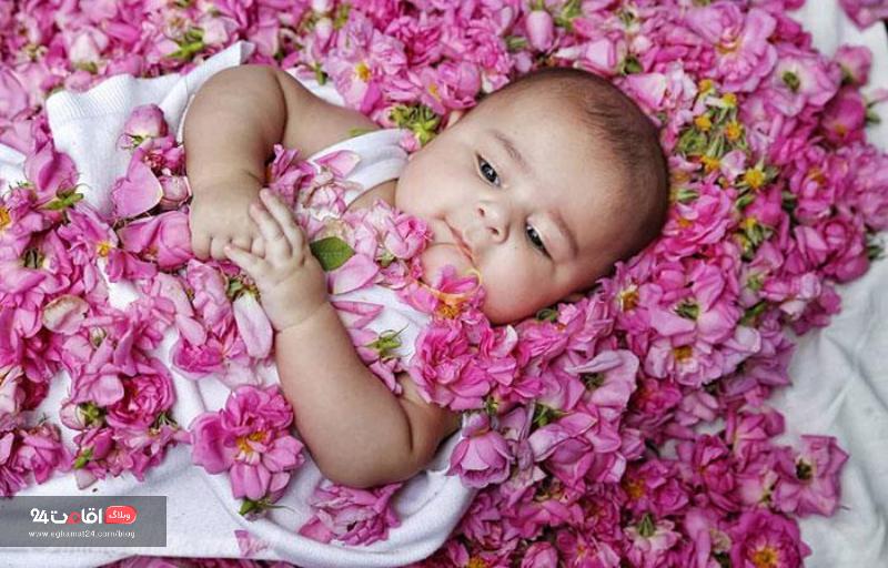 گل غلتانی نوزادان  روستای فرخد
