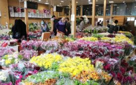 بازار گل مشهد (آدرس + ساعت کاری + شماره تماس)