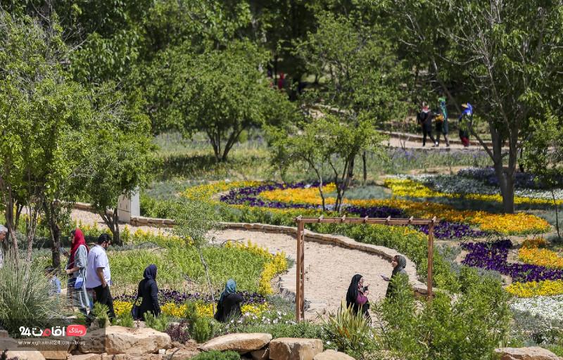 باغ گل ها شیراز