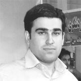 سید هادی ملک
